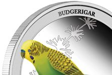 The Budgerigar Has Landed on Perth Mint Coin