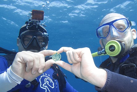 eilat divers Bank of Israel Releases First Coins in New Series Devoted to the Coral Reef of Eilat