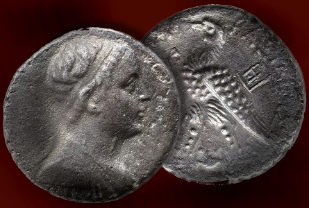 morton eden potolmy Morton & Eden To Sell Rare Ptolemy V Tetradrachm From Acre