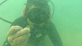 treature coins fl UW Gold Coins Found off Florida Treasure Coast.....again!