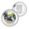 River Rapids Reverse 125x125 New Royal Canadian Mint Catalog Released
