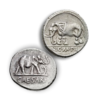 ele9 Elephants on Ancient Coins