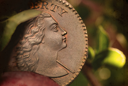 The Cutest of Apple Cheeks: The Jackman-Jung 1794 Large Cent