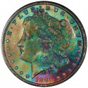 06666317 obv 125x125 Sunnywood Collection of Toned Morgans to Headline October Regency Auction IX