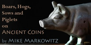 This Little Piggy Went to Market: Boars, Hogs, Sows and Piglets on Ancient Coins