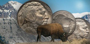 Classic U.S. Coins for less than $500 each, Part 9: Buffalo Nickels
