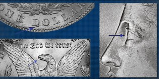 Spitting Eagles, Alligator Eyes and Donkey Tails: Three Morgan Dollar Varieties