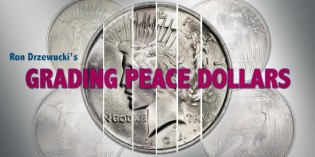 The Art of Grading Peace Dollars