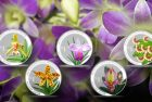 Singapore Mint to Launch Splendour of Native Orchids Series Coin Set