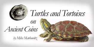 Turtles and Tortoises on Ancient Coins