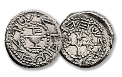Jewish War (66 - 70 AD). AR shekel (24mm, 13.34 gm, 10h)