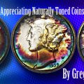 Collecting and Appreciating Naturally Toned Coins, by Greg Reynolds
