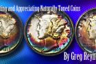 Collecting and Appreciating Naturally Toned Coins, Part 1
