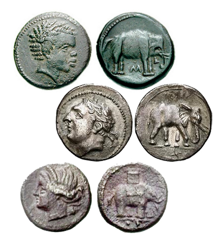 Ancient Coins - How Elephants were depicted on ancient coinage