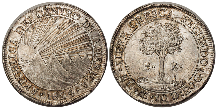 CENTRAL AMERICAN REPUBLIC. 1824-NG M AR 8 Reales. Images courtesy Atlas Numismatics
