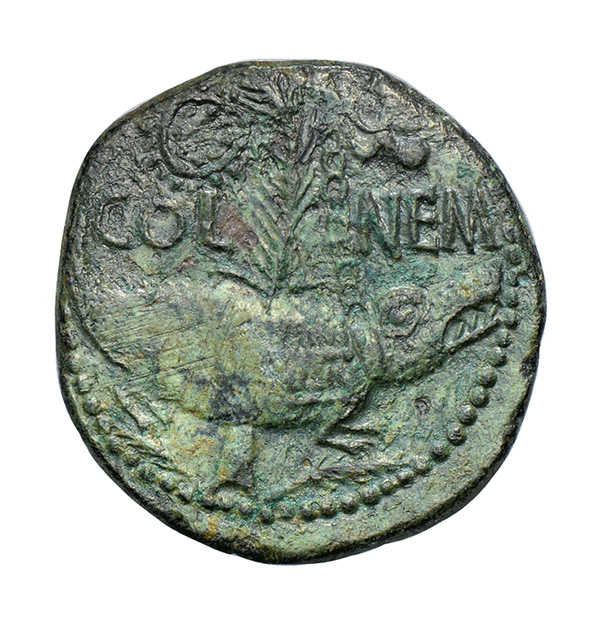 Bronze Dupondius - Augustus and Agrippa with Crocodile Reverse