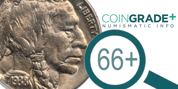 APMEX CoinGrade+ Buffalo Nickel Image