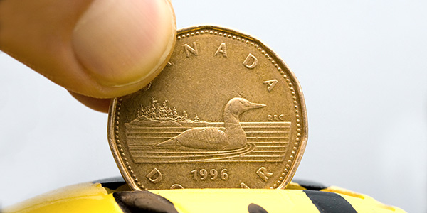 Canada 1996 Loonie