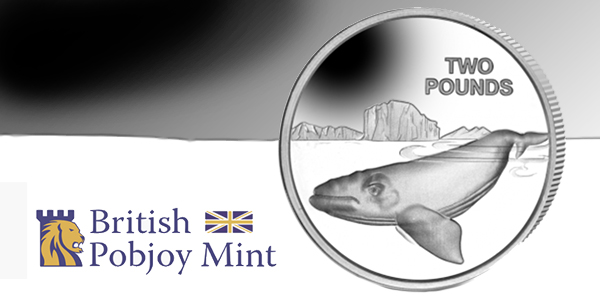 British Pobjoy Mint - Southern Right Whale